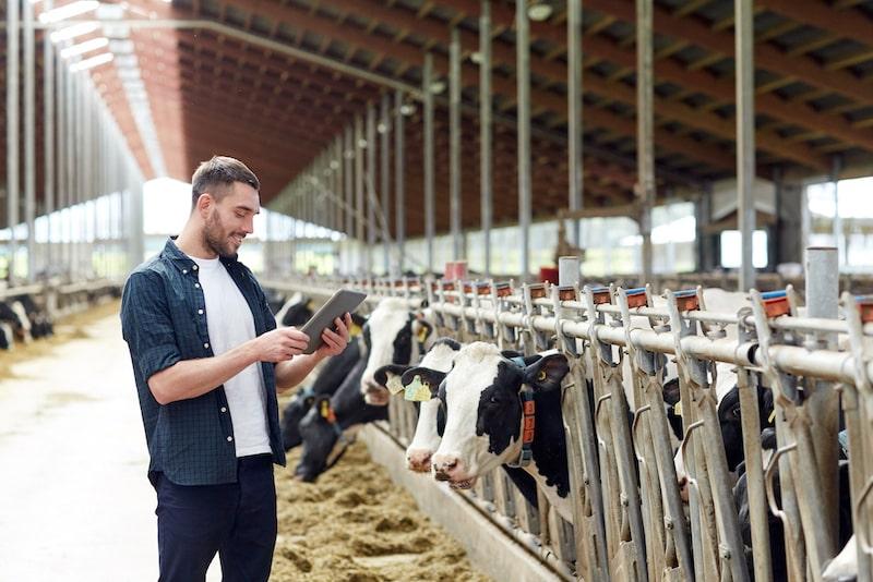 it Poschenrieder | Branche: Landwirtschaft